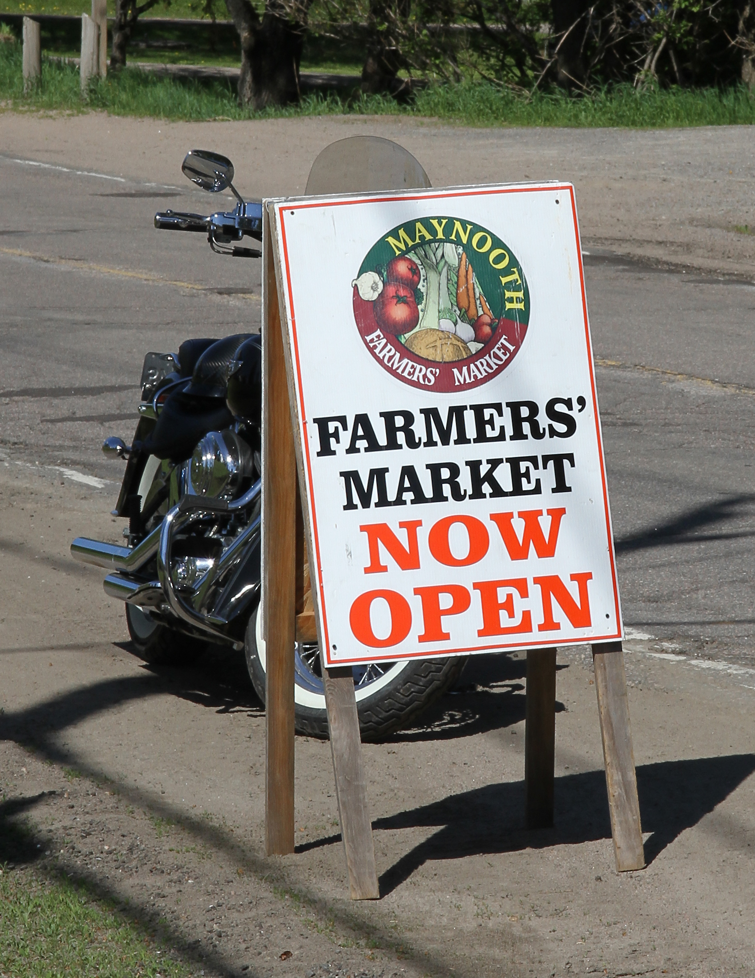 maynooth market