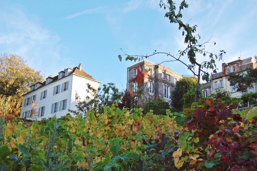 Montmartre (21)