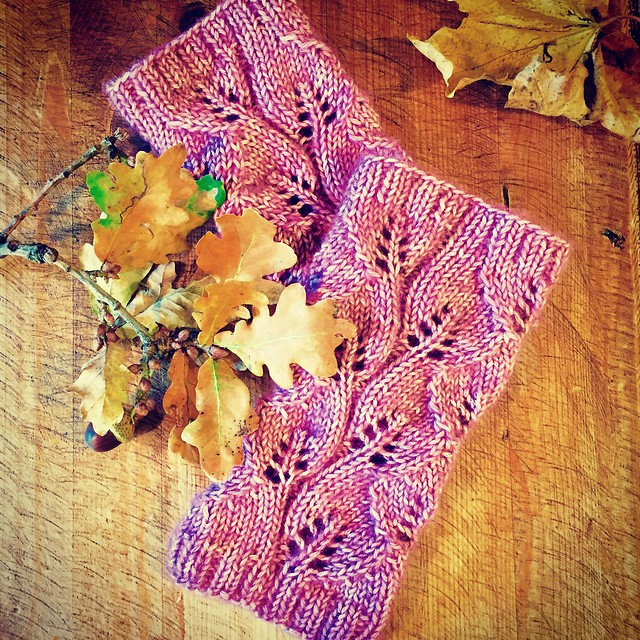 Leaf Collector's Mitts by Sarah Knight