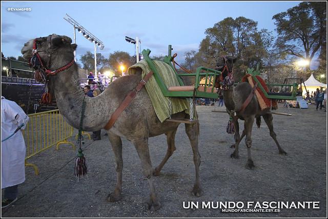 HuertaDelObispo07