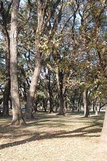 Parque 9 de Julio, Tucumán, Argentina