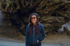 Izzy || Sequoia National Park