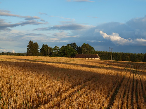 autumn sky cloud sun field evening estonia estland viro estonie эстония tartumaa εσθονία