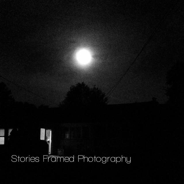 253.365 | moon over my homie.
