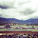 Best view in horse racing am I right?! #breederscup