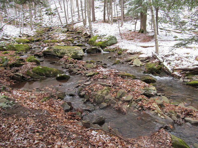 Mink Hollow Brook