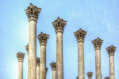 Capitol Columns-National Arboretum