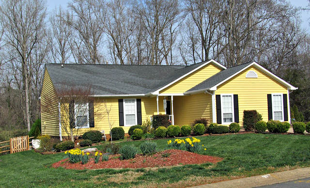 Yellow house and flowers, Canon POWERSHOT SX150 IS