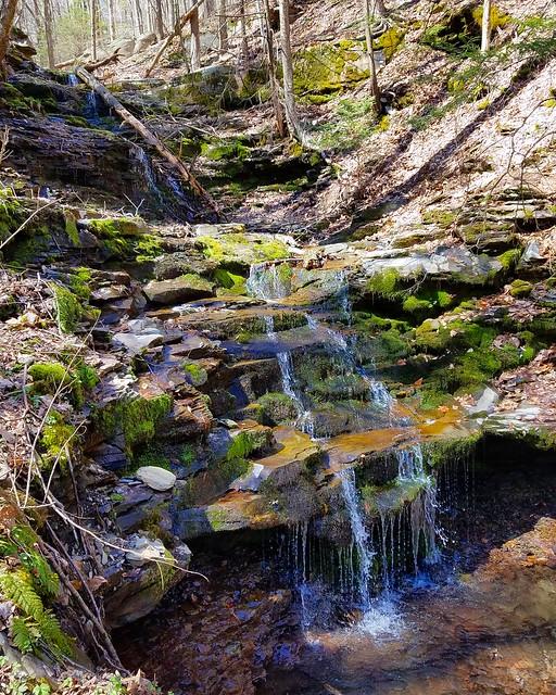 Travis Eberhart Falls