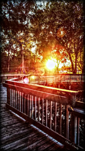 meltingintonight sunset magnoliapark southdaytonaflorida bridge dock water sunlight sunsrays bokeh railing wooden trees park scenic