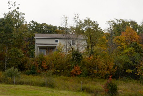 autumn trees usa fall colors leaves leaf unitedstates westvirginia