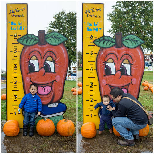 Milburn Orchards - Fall 2014