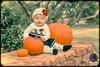 Texas Tech Pumpkin