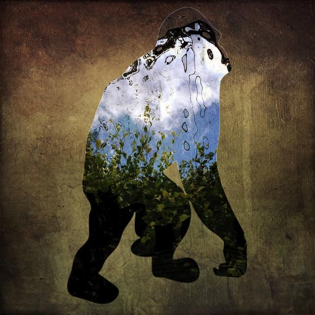 Gorilla Presence