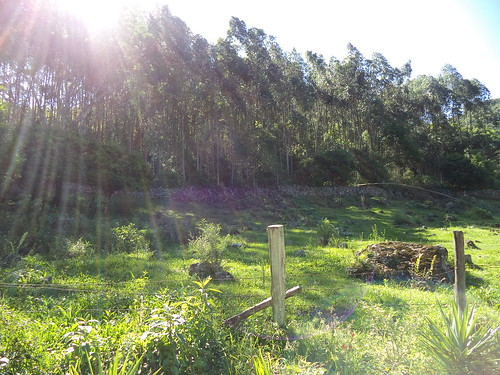 Município gaúcho situado no Vale do Taquari, a 60 km da cidade de Lajeado. Área da gruta Nossa Senhora de Lourdes