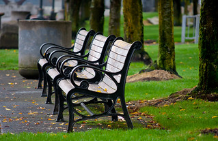 Waterfront Park Benches in a Row