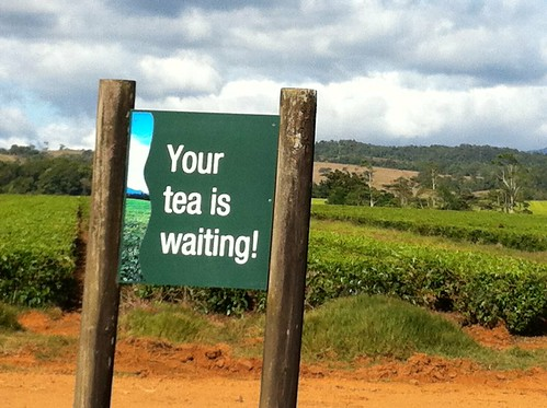 Sign at Nerada Tea