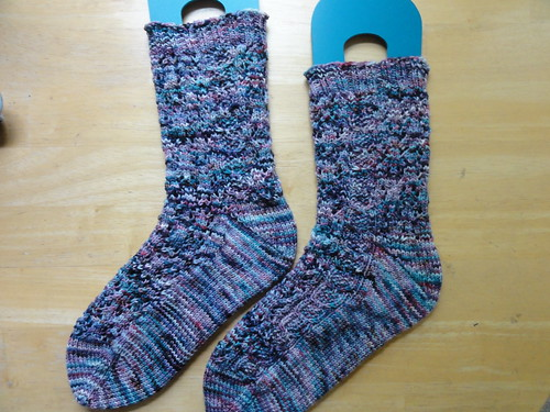 Come Along Pond Socks