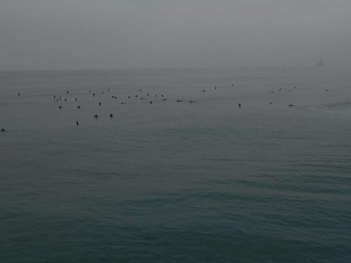surfing (1)