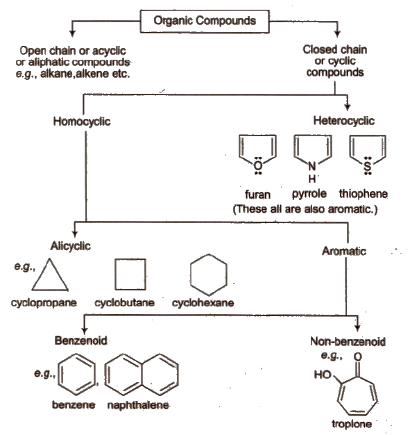 Cbse Class 11 Chemistry Notes General Organic Chemistry Aglasem