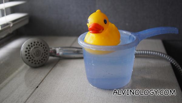 Rubber ducky in my bathroom