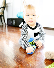 crawling(0.0), play(0.0), child(1.0), infant(1.0), boy(1.0), toddler(1.0), toy(1.0),