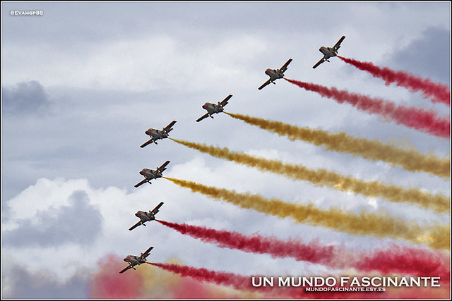 11OCT-Aguila02