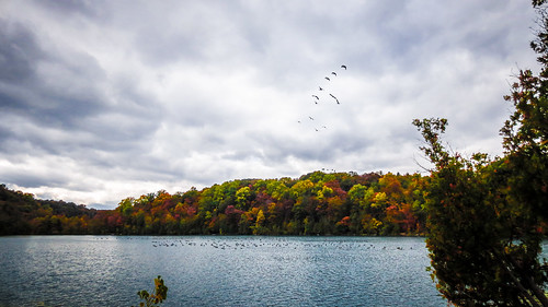 autumn usa nature colors leaves canon point landscape colorful shoot united powershot syracuse states
