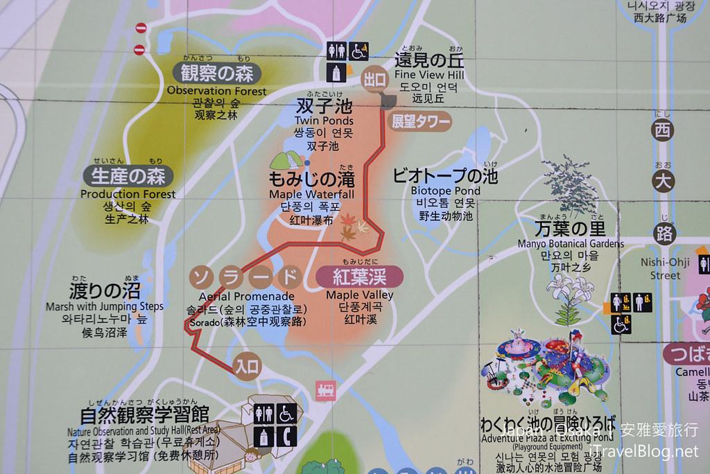大阪赏枫 万博纪念公园 红叶庭园 01
