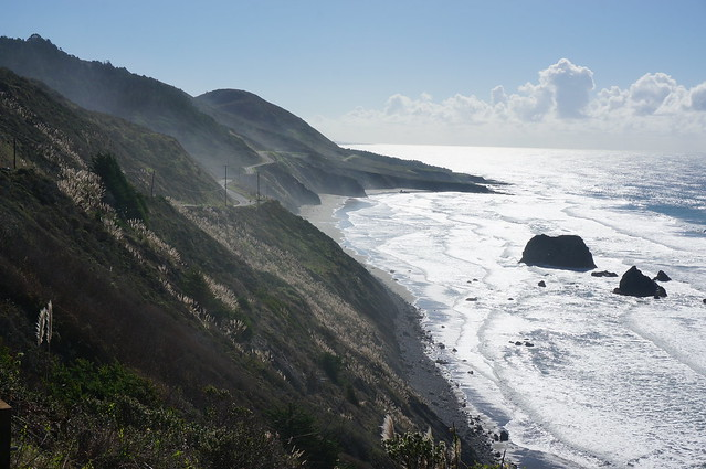Pacific coast north of Fort Bragg