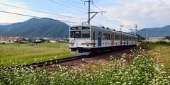 寺下~神畑間を走る「自然と友だち1号」ラッピング電車