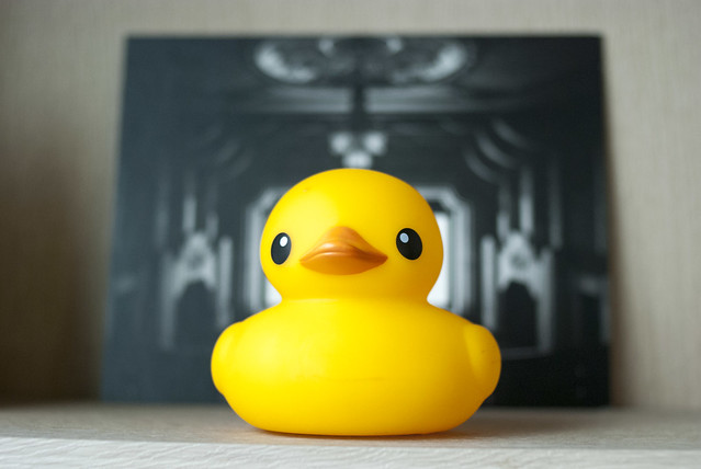 Rubber Duck Project Seoul