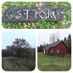 Østtorp DNT