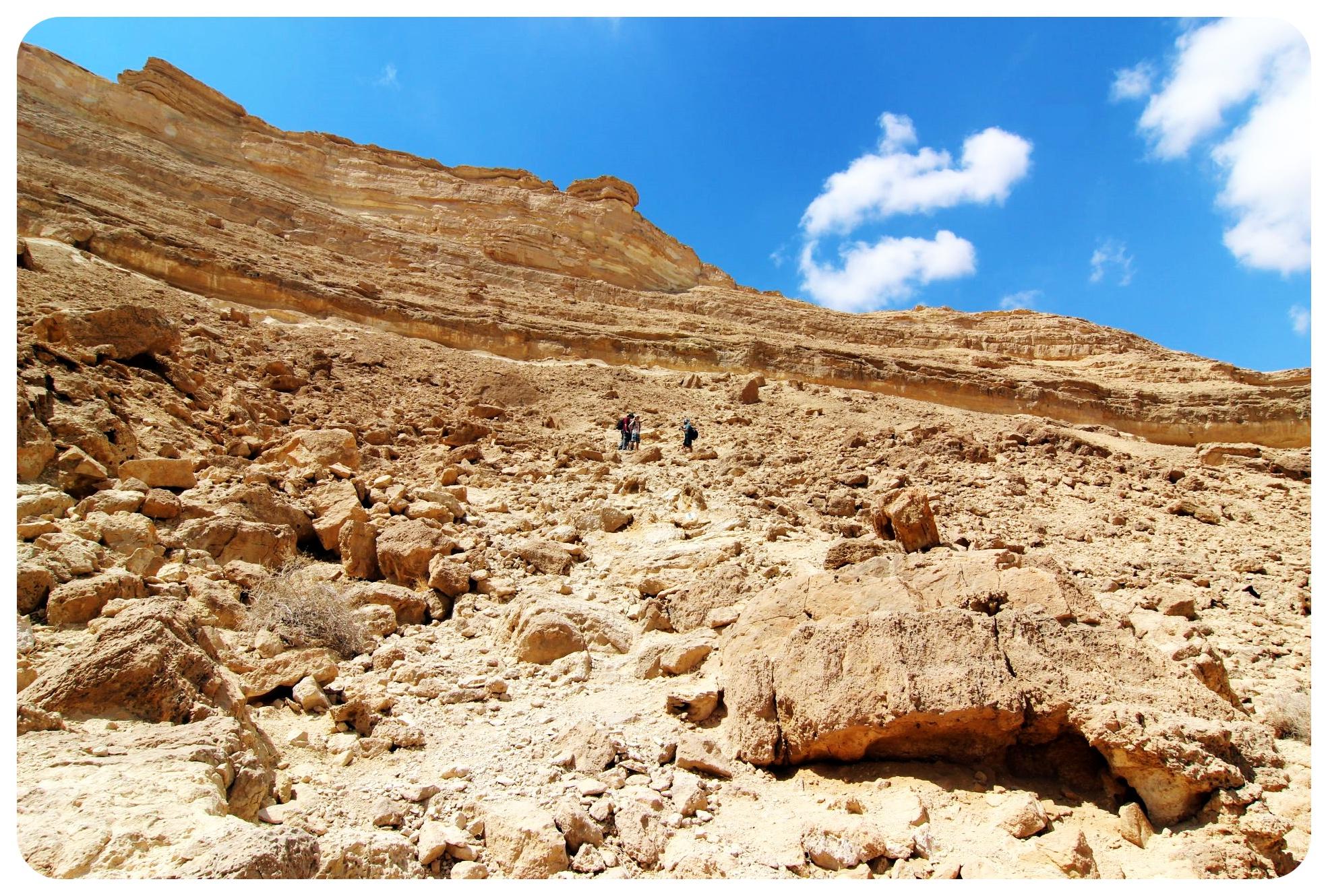 negev desert national israel trail