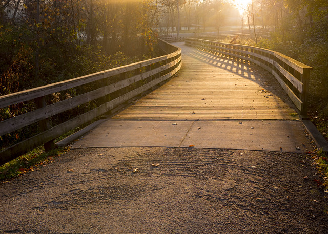 Golden Hour on the Towpath