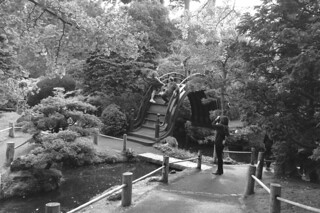 Japanese Tea Garden - Bridge