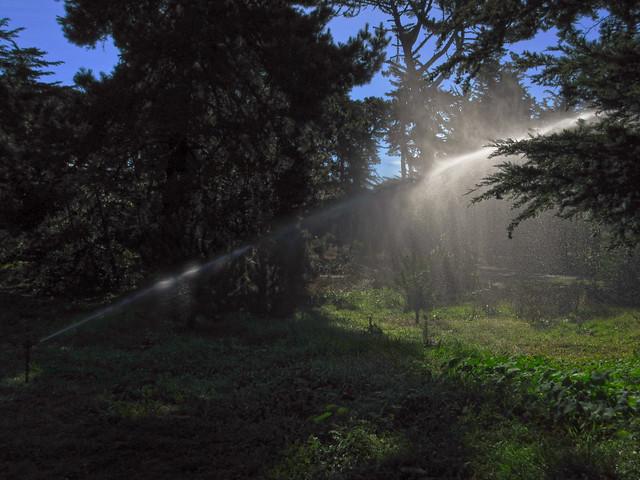 sprinkler in sunlight at Golden Gate Park, San Francisco (2014)