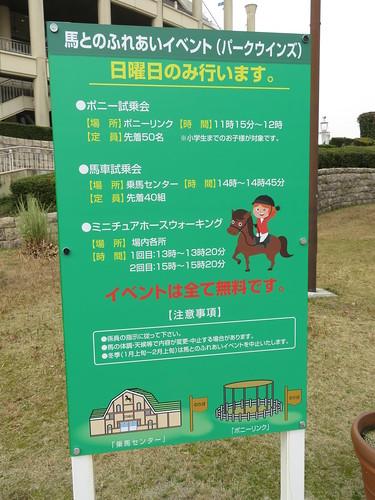 小倉競馬場パークウインズ時の馬との触れ合いイベント