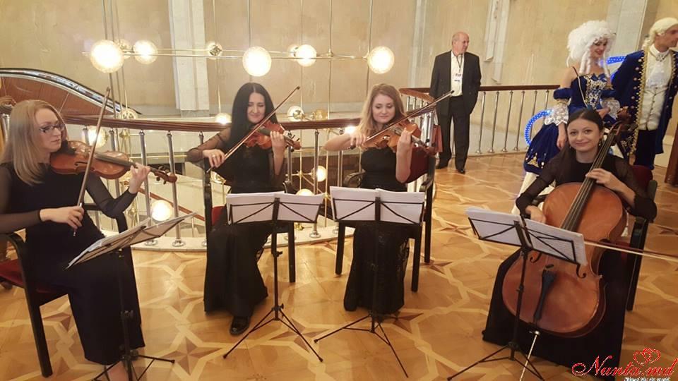 """Cvartetul """"VIV-ARDO"""""""