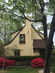 Gabled cottage style house with red azaleas, Albemarle Street NW, Washington, D.C.